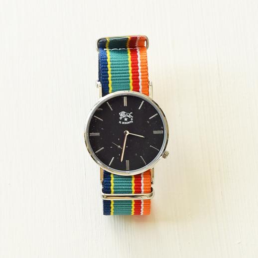 IL BISONTE(イルビゾンテ)腕時計 C-03 シルバー×マルチストライプ
